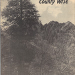CountyWisePilotCover